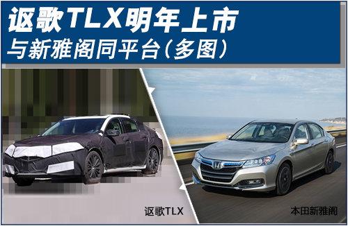 讴歌TLX明年上市 与新雅阁同平台