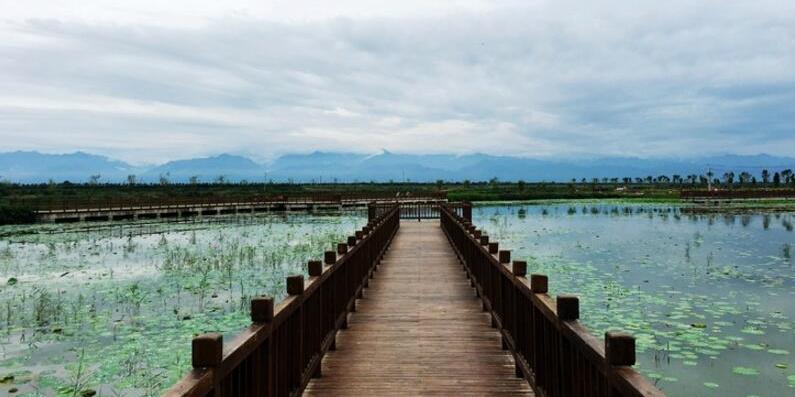 周末新去处,渭河湿地公园一日游