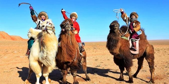 为了赴一场午时盛宴零下20度骑着骆驼穿越脑木更戈壁
