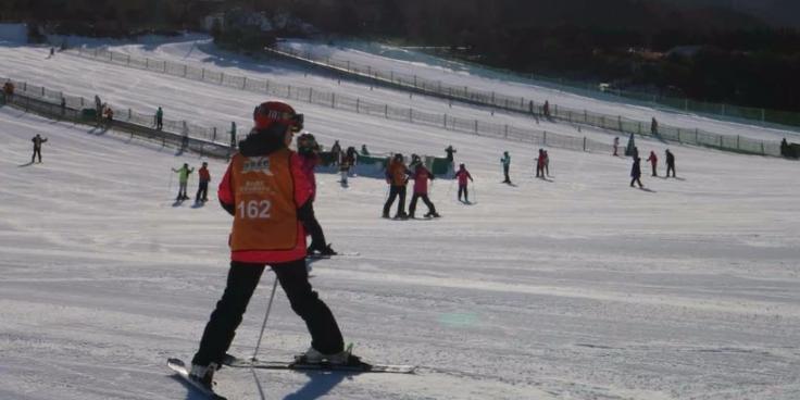 去北京体验一下滑雪带来的乐趣。