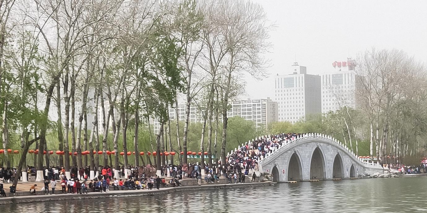 赏樱花不一定要到日本,北京就可以有很好的赏樱圣地