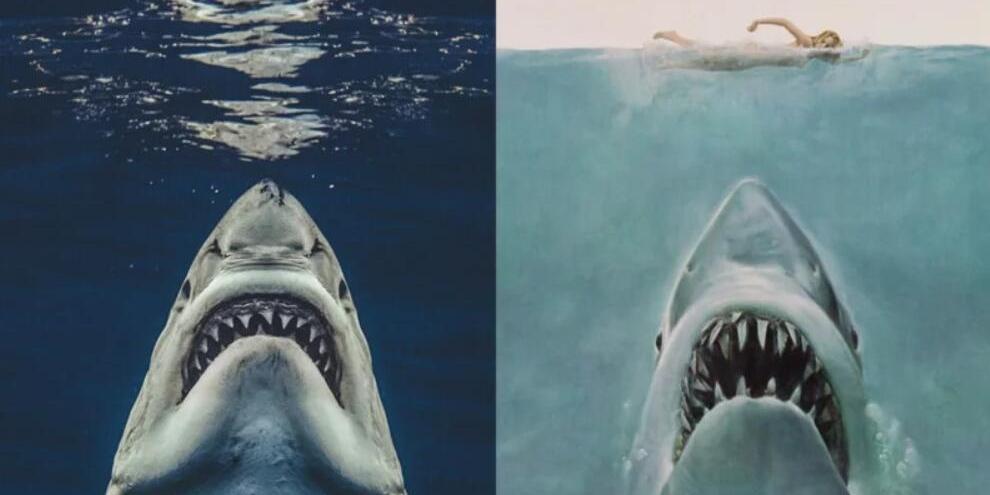 每日新闻:《大白鲨》cosplay!摄影师水下抓拍完美还原电影海报
