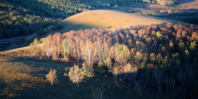 秋天的坝上,让千松坝的每一帧时光都藏着别样的风景。