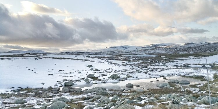 挪威西海岸最大最美的港都