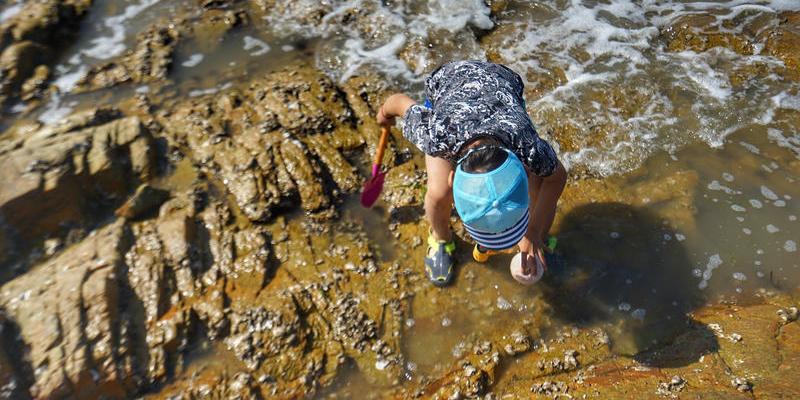 黄海之滨的美丽小城日照游玩 是一件再惬意不过的事情