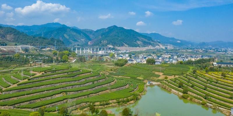 松阳县 杨家堂村  风貌保存较好的小村落