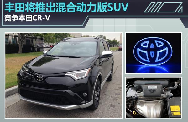 丰田将推出混合动力版SUV 竞争本田CR V高清图片